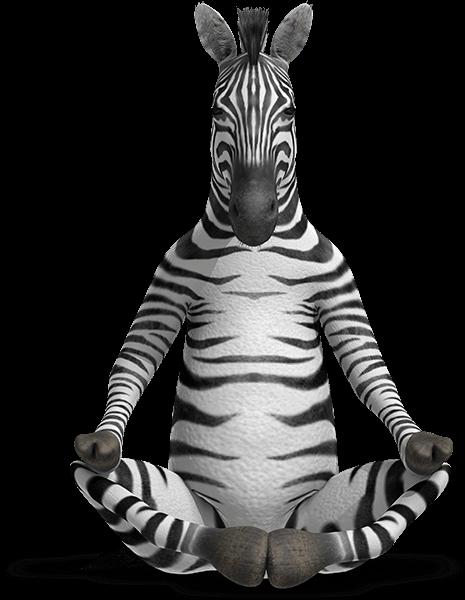 Zen - Zebra Pens