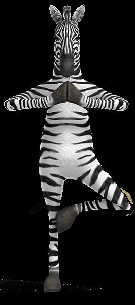 Zebra Pose